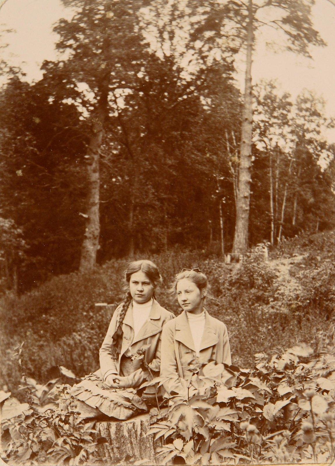 19. Две девушки сидят на пне