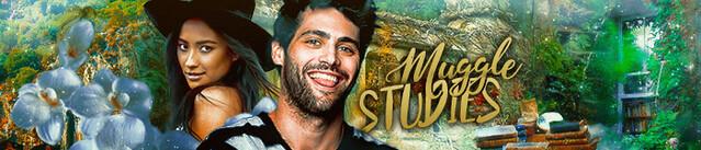 Muggle Studies Banner