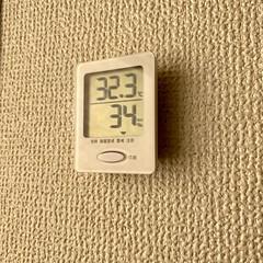 リモートワークはまだ続いてるけどパソコン部屋にエアコンがないので今日も辛そう。ノートなんで別の部屋に移動すればいいんだけど拡張モニターも繋いでるし環境が揃ってるのはこの部屋。でも暑い。うーん。。。