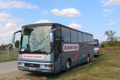 sharrtravel bus coach 01481mt manlionscomfort manlionsstar