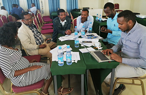 Amhara PPP task force round table discussion