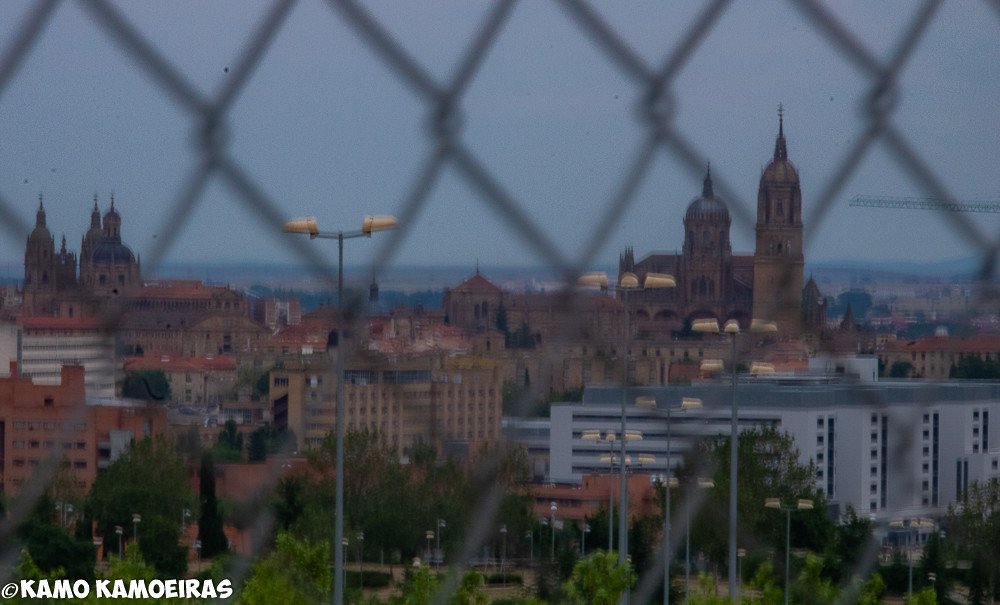 catedrales tras la valla