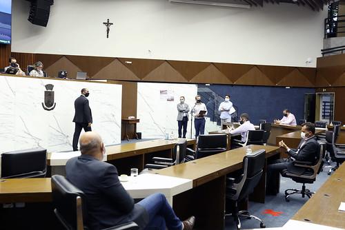 33ª Reunião Ordinária - Plenário
