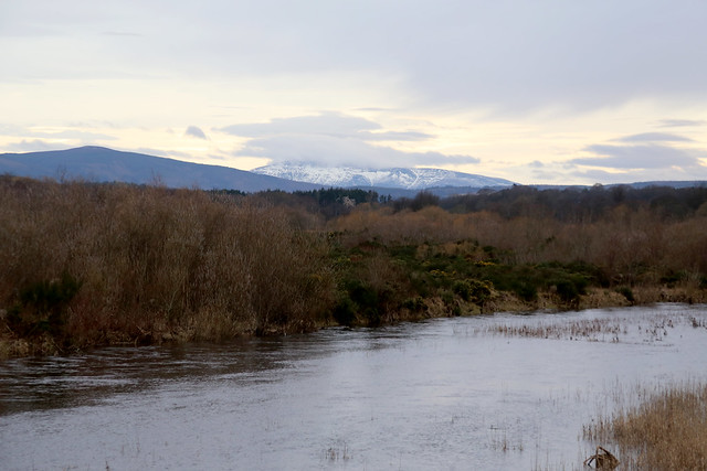 The River Spey from Spey Viaduct