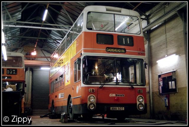 GM Buses - 4050 ANA50T