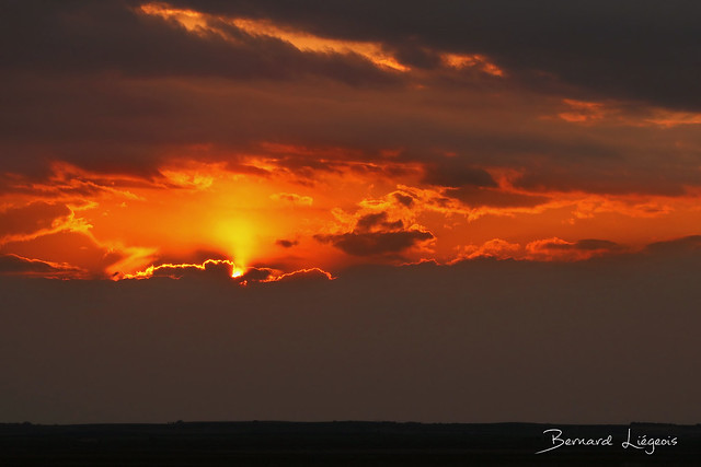 Villafáfila, plaine au couchant | plain at sunset