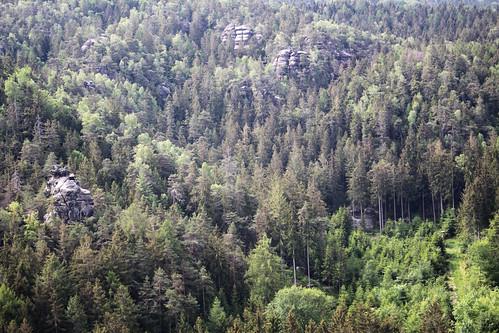 Zittauer Gebirge 037