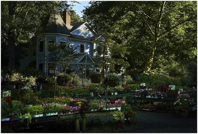 Garden Center at Dawn