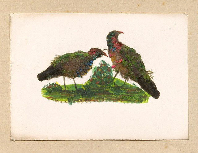 Birds of a Feather: Watercolour Birds with Original Feathers Glazed on (c. 1866)