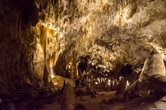 Exploring Carlsbad Caverns!