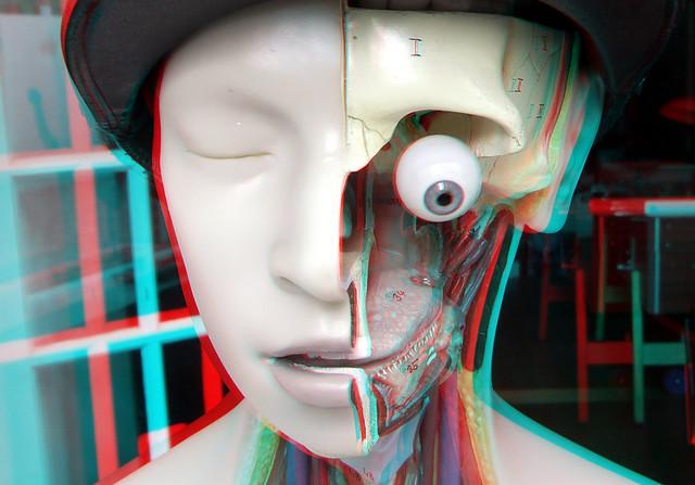 Half-Head in shop-window Dordrecht 3D