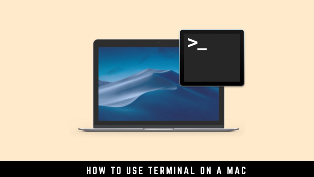 How to use Terminal on a Mac