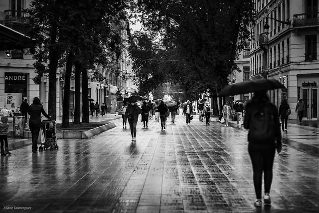 09062020-Jour de pluie à Lyon _DSC8671-Modifier-Modifier-Modifier