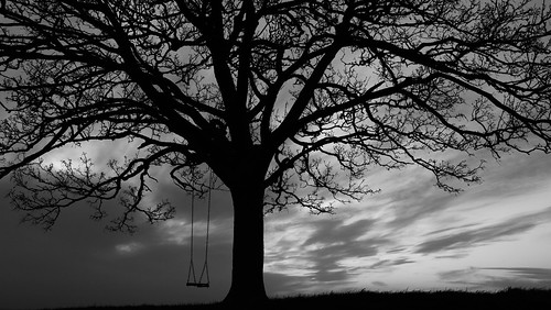 sunset sky blackandwhite bw black tree monochrome dark grey blackwhite moody south hill somerset swing impressionistic winter white canon thought sitting view think relaxing thoughtful thinking lonely swinging reminiscence lonelytree reminisce vantagepoint england cloud clouds evening efs1855mm calm quite englishcountryside eveninglight burrowhill canon750d canoneos750d dusk