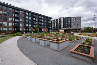 Towerside Community Gardens | by Mississippi WMO