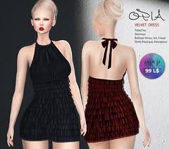 OPIA Velvet Dress @Pop-up Event