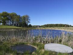 Här börjar Krondiket idag, Åkersberga mellan golfbana och väg 276.