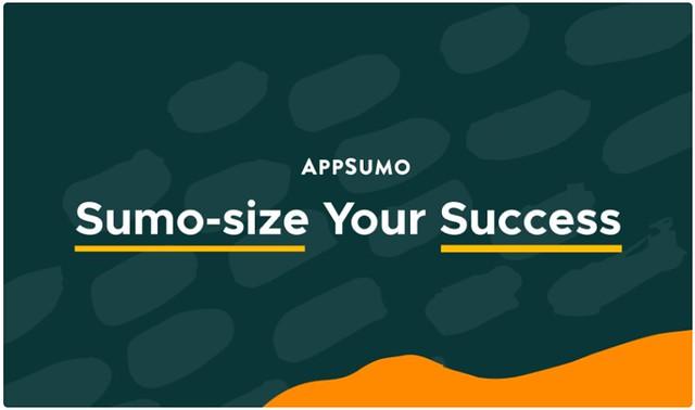 SUMOSIZE-YOUR-SUCCESS-COURSE width=500