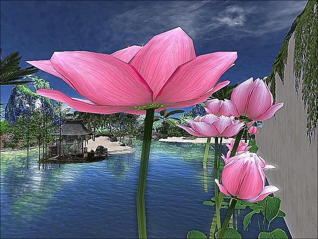The Floating Lotus Art Gallery - Moon Lotus