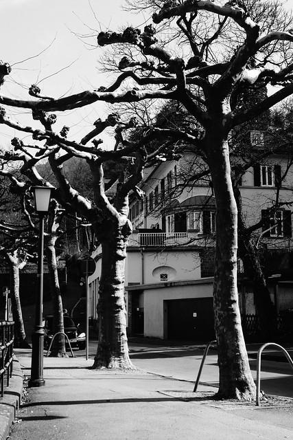 Heidelberg, March