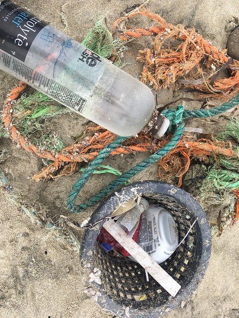 Marine Debris Surveys