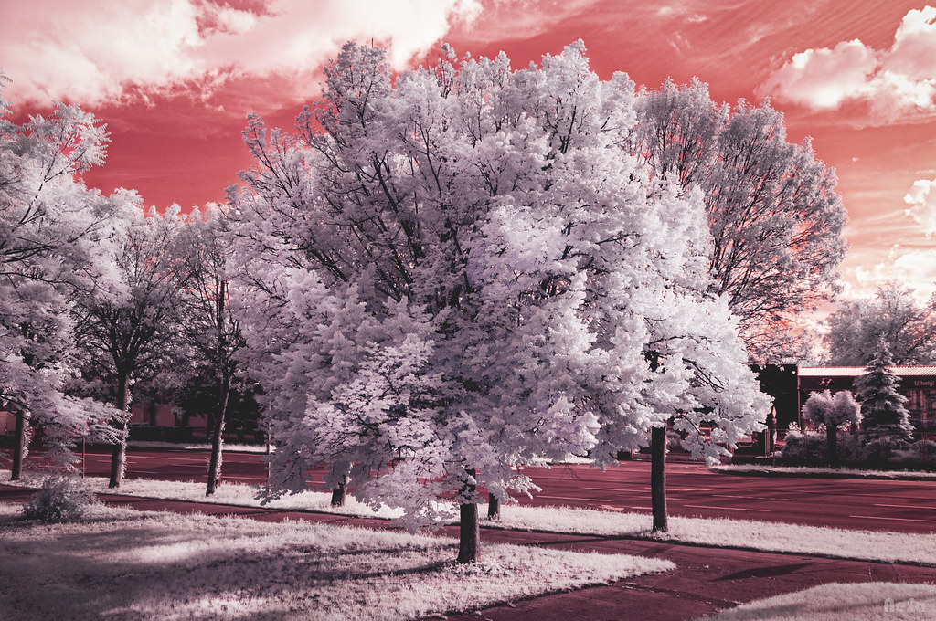 Infrared: The moment  [explored]