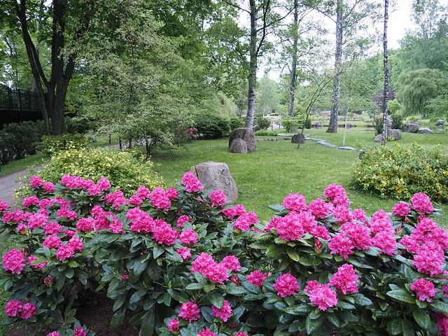 Japanese Garden, Tallinn