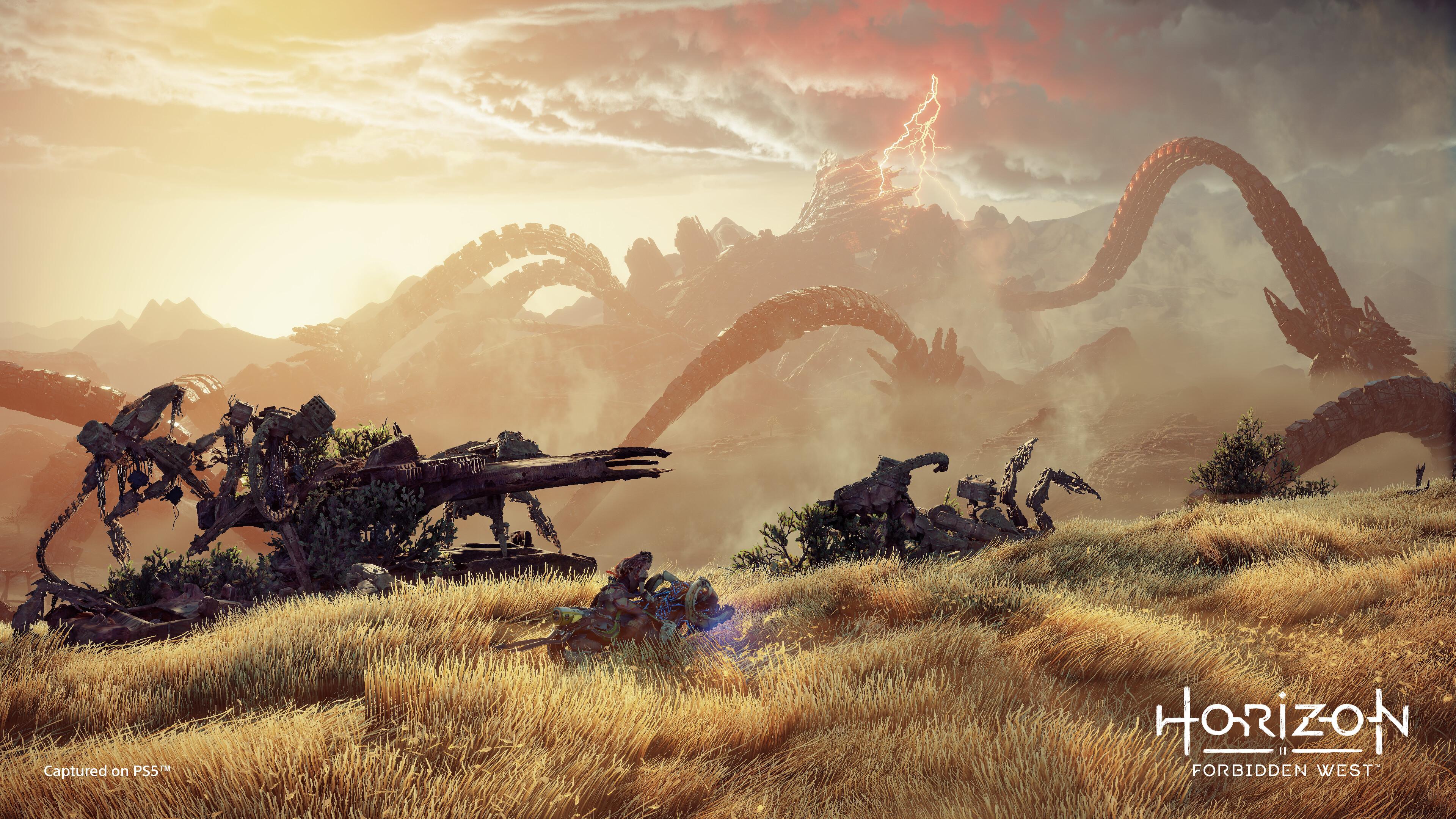Horizon Forbidden West (PS5)