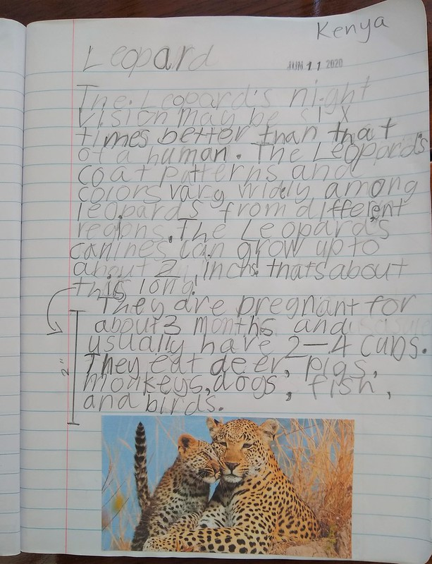 Leopard journal entry