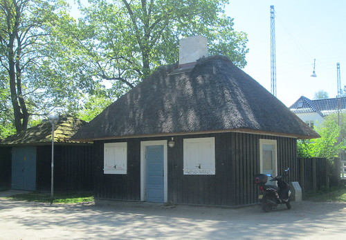 Aalborg Thatched Building