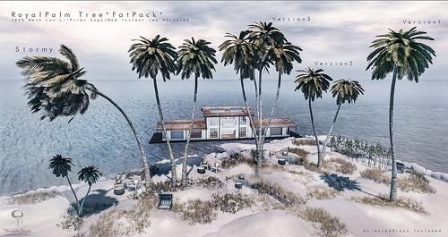 The Little Branch - Royal Palm  - @Vintage Fair 2020