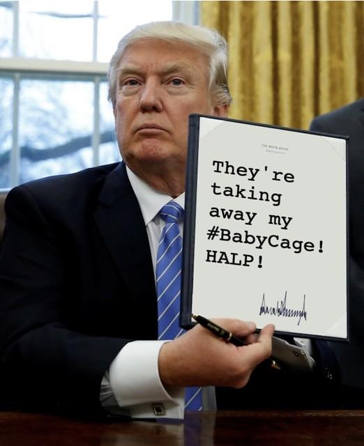 Trump_takingawaybabycage