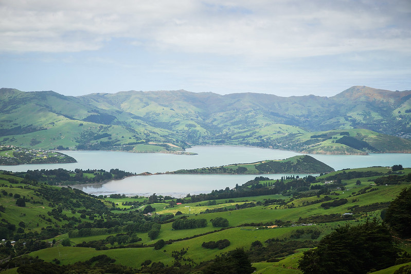 The view of Akaroa bay