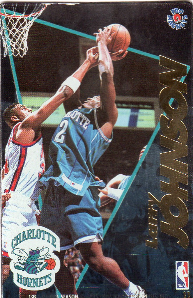 1995 Pro Magnets Basketball - Johnson, Larry