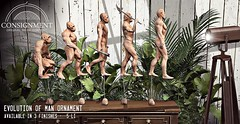 Evolution of man Statue - out @ c88