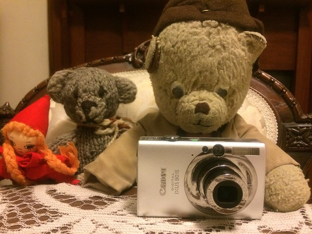 Paddington Plays Photographer