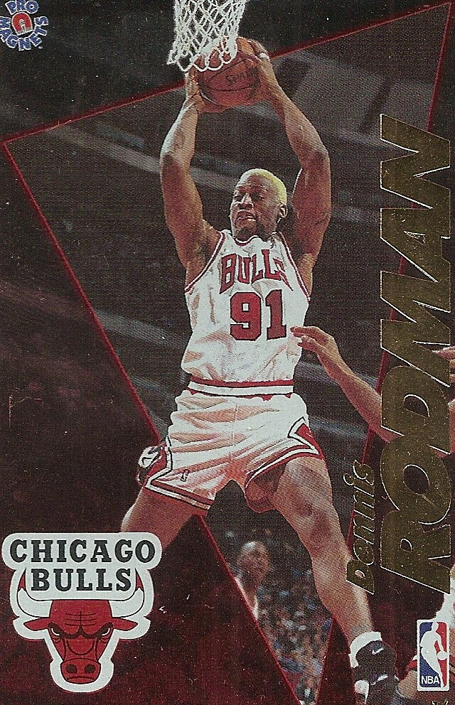 1995 Pro Magnets Basketball - Rodman, Dennis