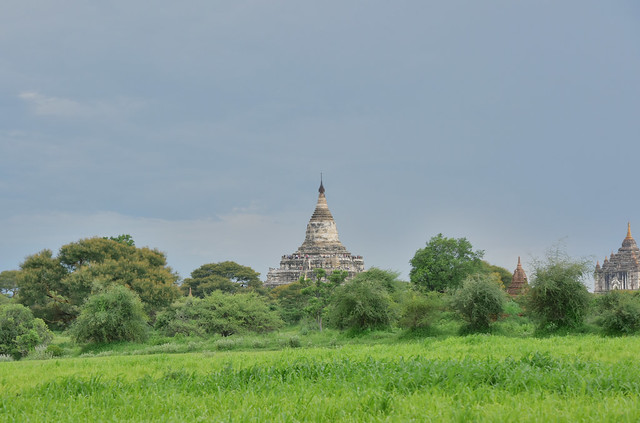 Thatbyinnyu Paya (on the right) and Shwesandaw Paya (on the left), Bagan, Myanmar (Birmania) D810 1910