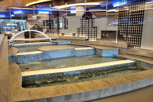 ROC Greater Rochester International Airport Downtown-Themed Fountain by Arrivals Escalator  2020 March 11