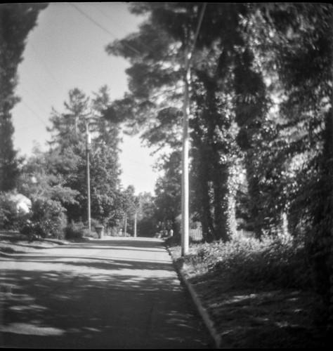 blueridgeavenue latelight asheville northcarolina lindenlindar lindenlindarboxcamera boxcamera 6x6 120 120film film mediumformat kodaktrix400 hc110developer monochrome monochromatic blackandwhite landscape