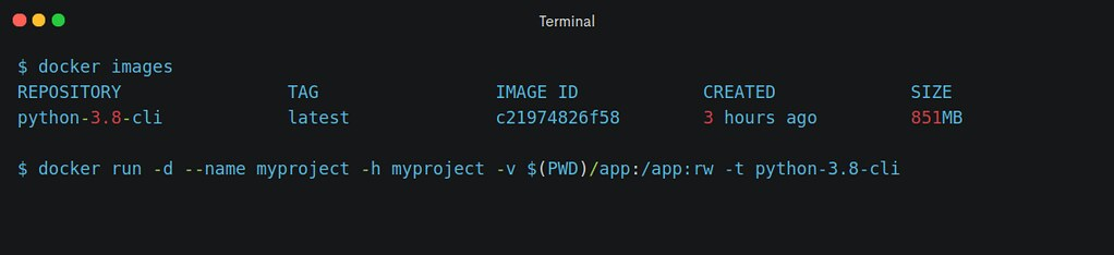 Programming in Container - Docker run