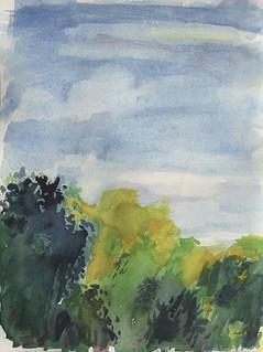 Summer trees & sky