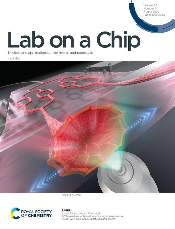 Paper on ECM-based Microchannels Published