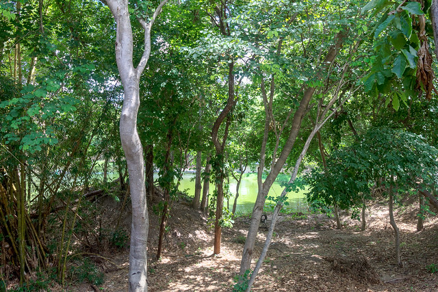 Ang Kaew Reservoir (93 sur 121)