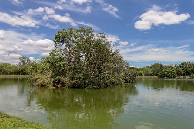 Ang Kaew Reservoir (55 sur 121)