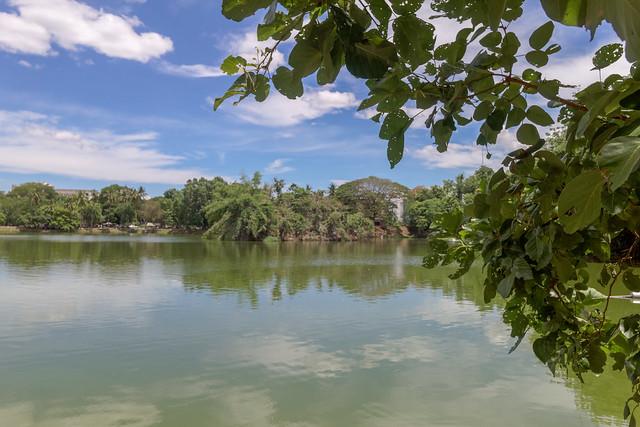 Ang Kaew Reservoir (54 sur 121)
