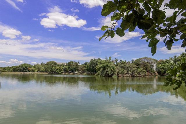 Ang Kaew Reservoir (53 sur 121)