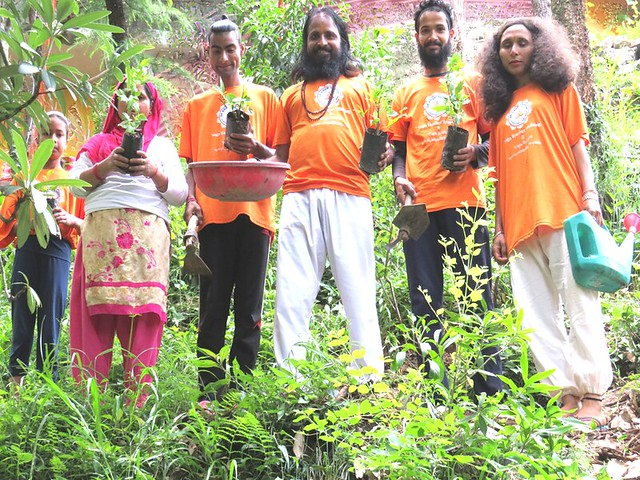 Tree Planting By Yoga Teachers Group