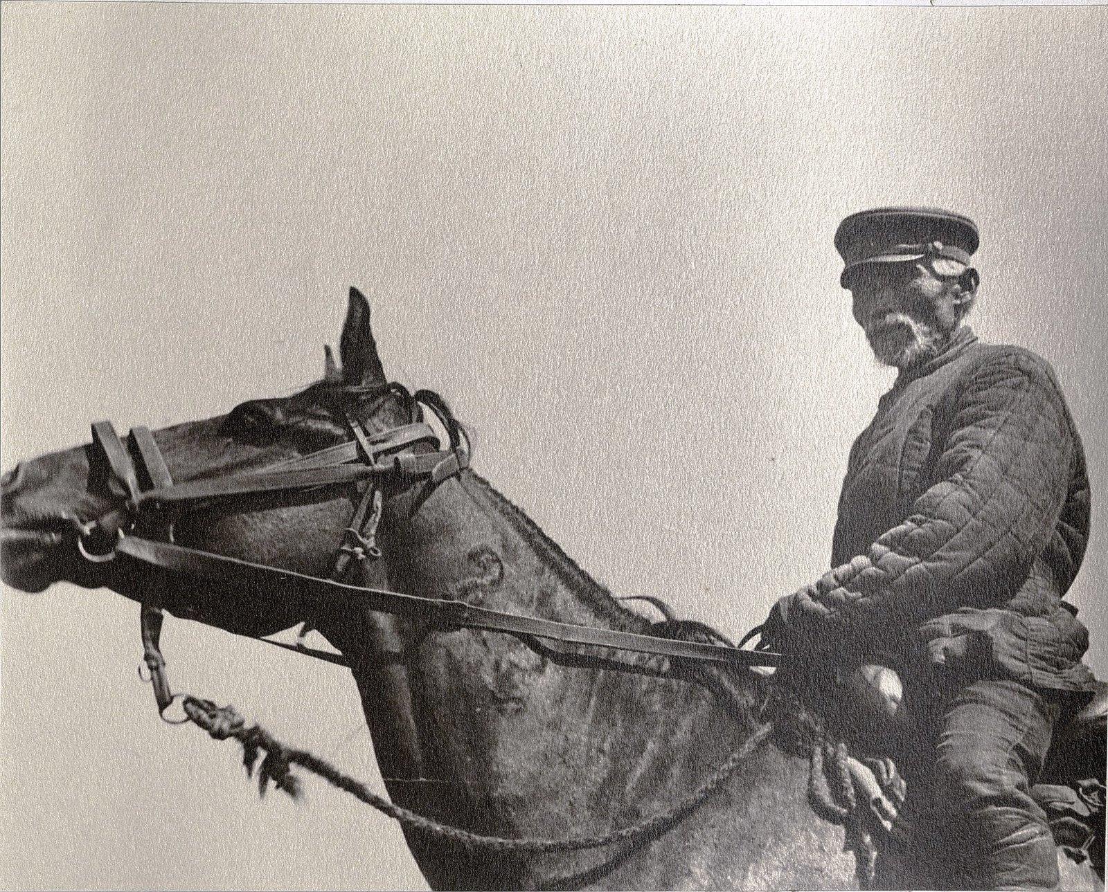62. Сотрудник конного завода