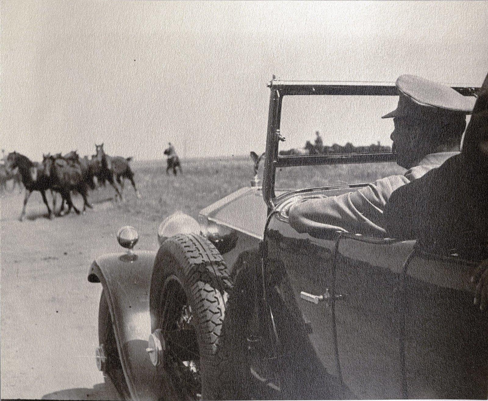 61. И.В. Сталин во время посещения конного завода